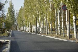В Запорожской области из выделенных на содержание и ремонт дорог 760 миллионов гривен освоили только половину - ФОТО