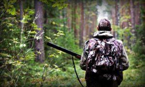 В Запорожской области из-за военного положения приостановили сезон охоты