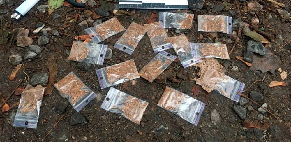 В Запорожье патрульные задержали 19-летнего наркокурьера - ФОТО