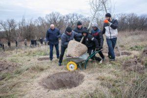 В Запорожье на Хортице появится новая аллея: медики высадили десятки деревьев - ФОТО