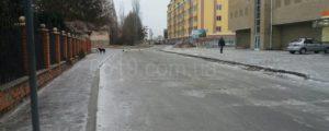 В Запорожской области бездомные собаки напали на местного жителя - ФОТО