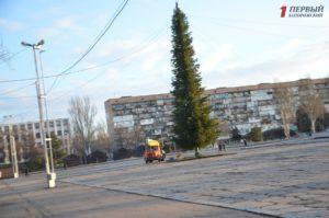 В Запорожье начали украшать главную елку области на площади Фестивальной - ФОТО