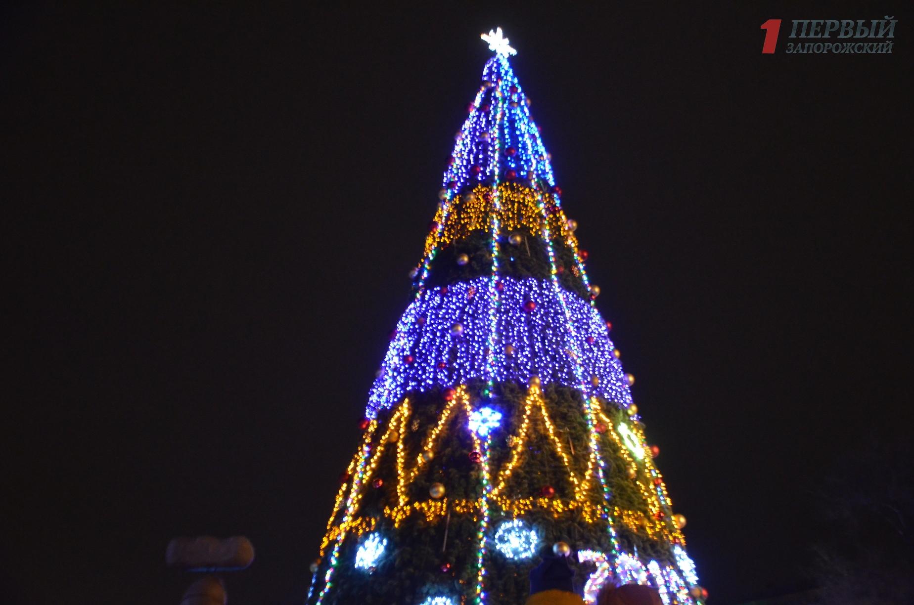 Очереди к домику святого Николая, праздничные фотозоны и танцы Дедов Морозов: как запорожцы зажгли елку в центре города – ФОТО, ВИДЕО