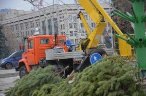 В Запорожье на площади Фестивальной коммунальщики «одевают» главную елку области – ФОТО
