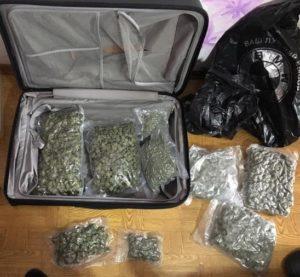 Запорожцы наладили контрабанду наркотиков в страны ЕС и Россию - ФОТО