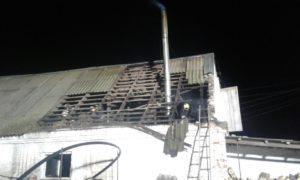В Запорожском районе горела хозпостройка: пожарные спасли поголовье свиней - ФОТО