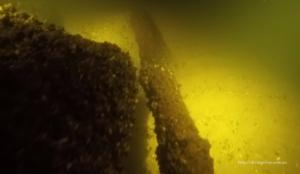 Запорожский дайвер отправился на поиски таинственной подводной пещеры в водах Днепра – ФОТО, ВИДЕО