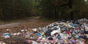 В Запорожье Заводская райадминистрация заплатит более полумиллиона гривен за ликвидацию стихийных свалок