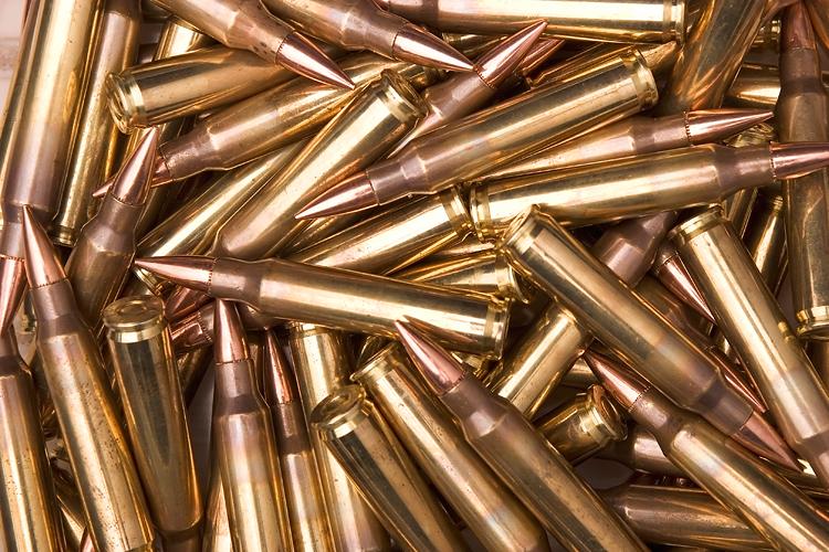 У жителя Запорожской области изъяли четыре сотни патронов - ФОТО