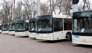 Муниципального транспорта не будет: в Мелитополе отложили покупку больших автобусов - ВИДЕО