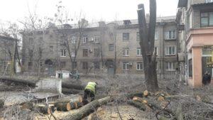 В Днепровском районе Запорожья проводят кронирование старых деревьев