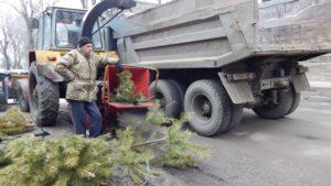 В Запорожье продолжается утилизация новогодних елок