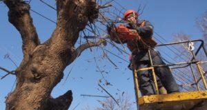 В Запорожской области завтра произойдет масштабное отключение электроэнергии