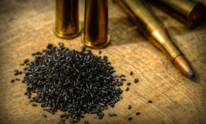 У жителя Запорожской области изъяли наркотики, боеприпасы и взрывчатку - ФОТО