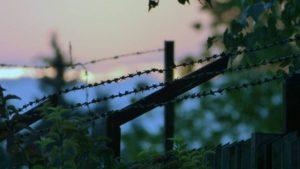 Маньяки и педофилы в Украине: истории, следствие и меры предосторожности