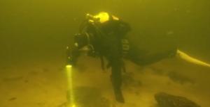 Запорожский дайвер показал жизнь подводного мира Днепра – ФОТО, ВИДЕО