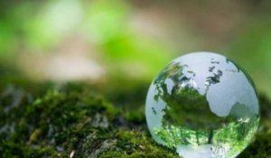 Запорожцев приглашают присоединиться к акции «Час земли от WWF»