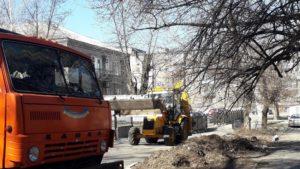 В Днепровском районе Запорожья удалят 130 аварийных деревьев