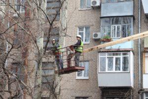 В Александровском районе Запорожья проводят обрезку деревьев - ФОТО