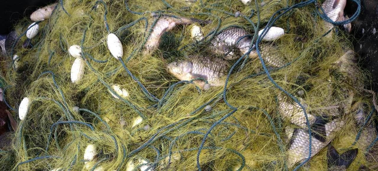 На Каховском водохранилище поймали браконьера, выловившего 47 килограммов рыбы - ФОТО