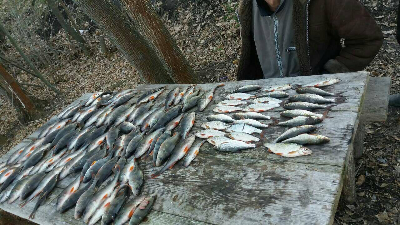 В Запорожской области на водохранилище задержали браконьера - ФОТО