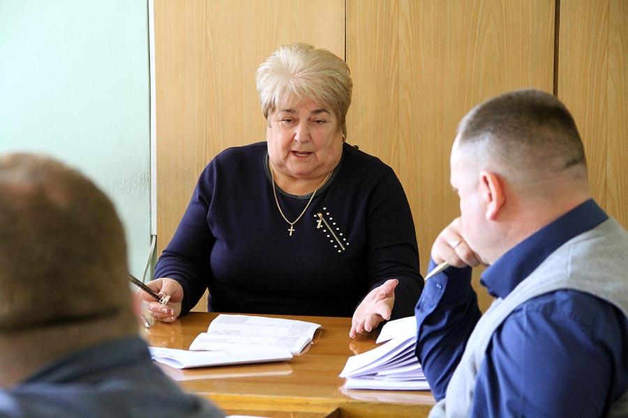 Депутат Запорожского областного совета задекларировала семь земельных участков и полмиллиона гривен «налички»