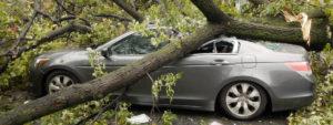 Запорожанка отсудила у коммунального предприятия 84 тысяч гривен за поврежденный автомобиль