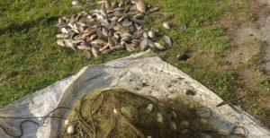 На Каховском водохранилище поймали браконьера, выловившего 30 килограммов рыбы - ФОТО