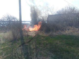 В Запорожской области продолжают гореть экосистемы - ФОТО
