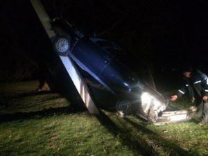 В Запорожской области легковушка налетела на электроопору: привлекались спасатели - ФОТО