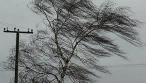 В Запорожье ожидается гроза и шквальный ветер