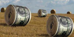 Запорожские фермеры заявляют о жестоких избиениях и пытках с утюгом ради вымогательства денег