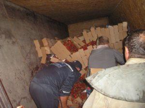 В Запорожской области перевернулась фура с пятью тоннами клубники - ФОТО