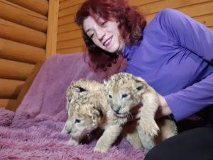 В одном из зоопарков Запорожской области появились трое маленьких львят – ФОТО