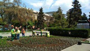 В запорожском сквере высадили более 6,5 тысячи цветов - ФОТО