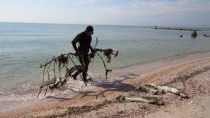 Спасатели очистили в Кирилловке 75 пляжей: со дна достали бытовой мусор и металлические конструкции - ФОТО