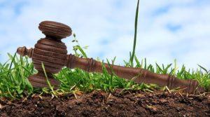 В Запорожской области возрастут поступления в бюджет громад после проведения земельных аукционов