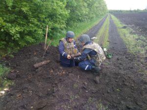 В Запорожской области нашли и обезвредили арсенал боеприпасов - ФОТО