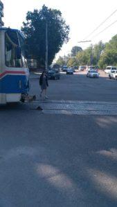 В Запорожье на центральном проспекте произошло ДТП с автобусом и трамваем – ФОТО