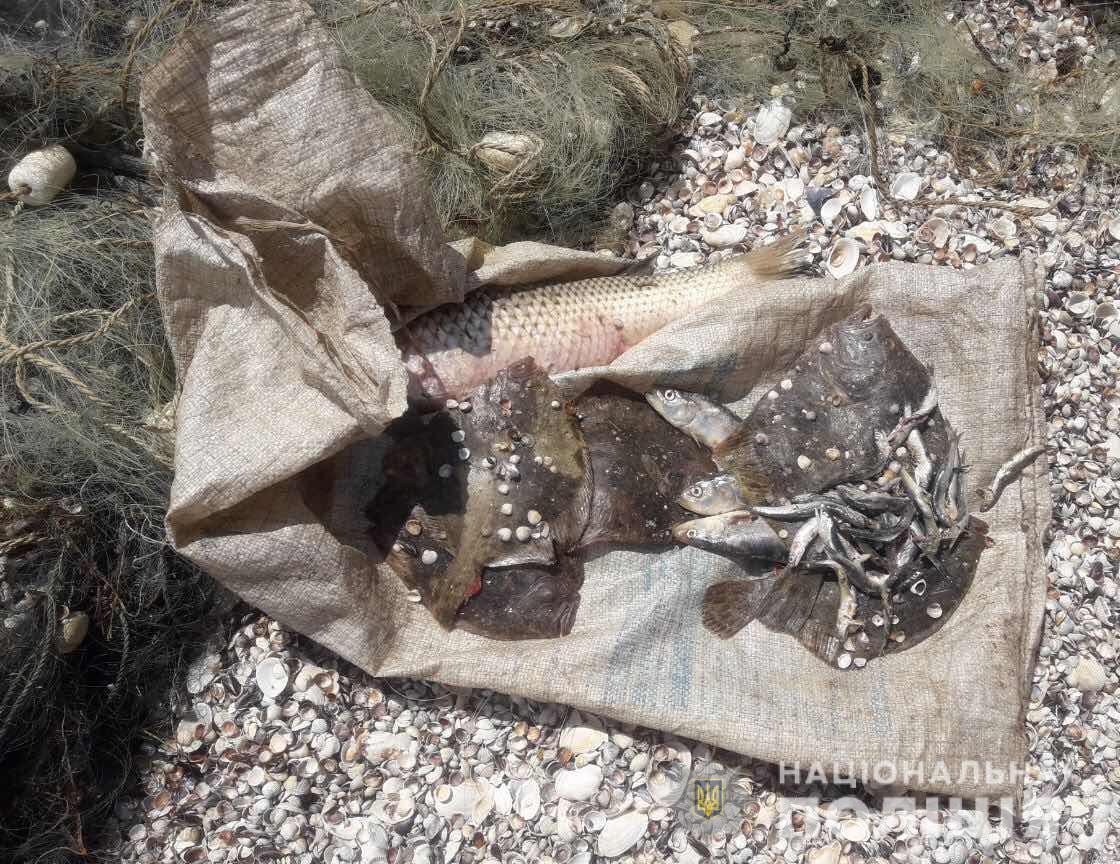 В Запорожской области на заповедной территории задержали двух браконьеров - ФОТО