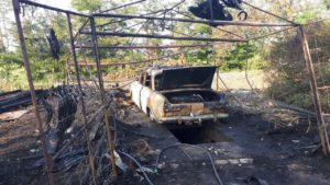 У Запорізькій області згорів гараж з очерету та автомобіль в ньому - ФОТО