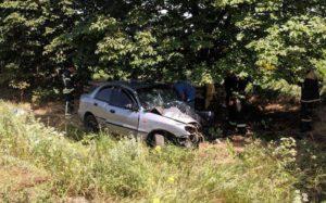 В Запорожской области на трассе легковушка слетела в кювет и врезалась в дерево: есть пострадавший - ФОТО
