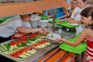 В Запорожской области ревизоры обнаружили в 8 детских лагерях нарушения в организации питания