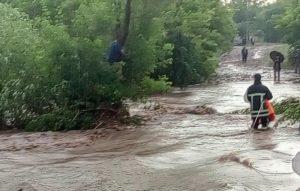 В Запорожской области мужчину снесло потоком воды - ФОТО