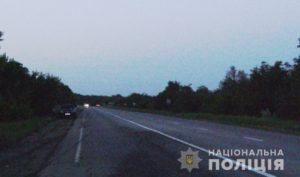 В Запорожском районе насмерть сбили женщину: полиция ищет водителя и свидетелей ДТП