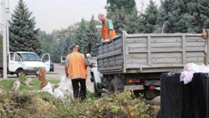 В Александровском районе Запорожья в очередной раз убрали стихийную свалку - ФОТО