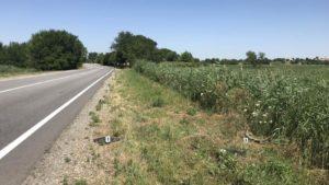 У Запорізькій області водій насмерть збив 17-річного хлопця і втік з місця ДТП: поліція розшукує свідків