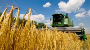 Запорізькі аграрії зібрали 2,5 мільйона тонн зерна