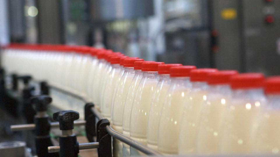 Запорізькі молочники ухилилися від сплати 7,2 мільйона гривень податків