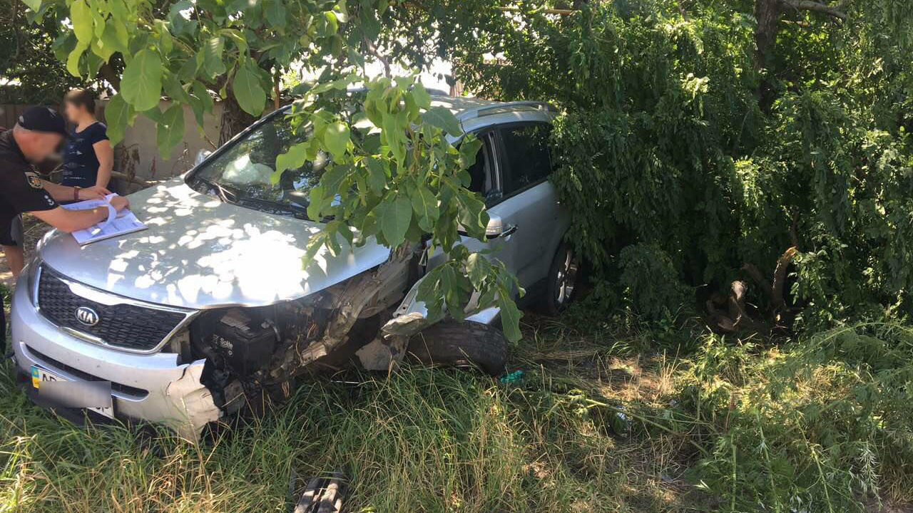Неудачный обгон: в Запорожской области столкнулись два автомобиля - ФОТО